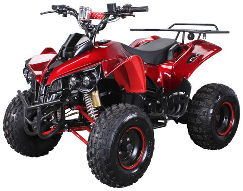 Kinder ATV Quad Rene-kid S10 1000Watt